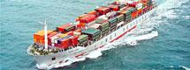 Import Export Broker